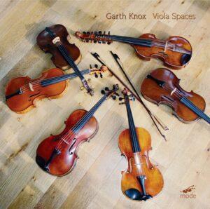 Viola Spaces